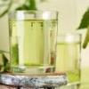Березовый сок - польза и вред березового сока