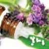 Гомеопатия для лечения орви