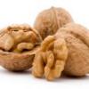 Грецкий орех: польза и вред, полезные свойства