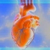 Холестерин - норма в крови, повышение, понижение