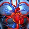 Как лечить сердечную недостаточность