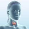Кисты щитовидной железы. Причины и лечение