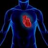 Когда сжимает сердце
