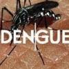 Лихорадка денге: причины, симптомы, лечение