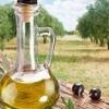 Масло руколы: применение, свойства