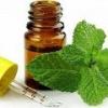 Ментоловое масло: свойства и применение