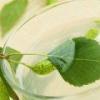 Можно ли кормящей маме пить березовый сок?