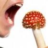 Отравление грибами, симптомы, первая медицинская помощь при отравлении
