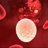 Повышены лейкоциты в моче при беременности