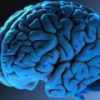 Сильное устройство считало сигналы мозга мужчины, и заставило его ходить