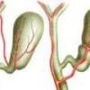 Симптомы и лечение перегиба желчного пузыря