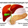 Удаление желчного пузыря: последствия, отзывы