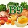 В каких продуктах содержится фолиевая кислота? (Витамин b9)