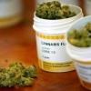 В скором времени всем известное наркотическое вещество может стать антидепрессантным средством!