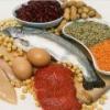 Все, что необходимо знать про продукты, содержащие белок